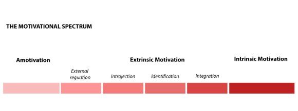 Motivational Spectrum